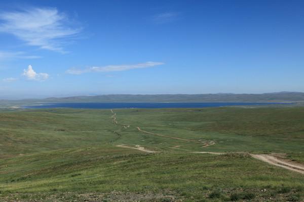 ホロンバイル平原