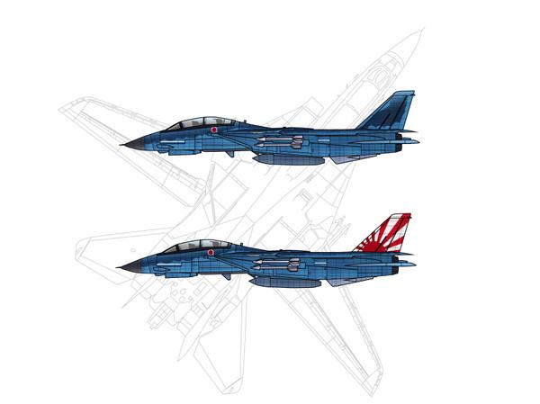 F14reiauto2
