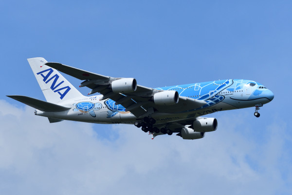 A380ジンベエザメ